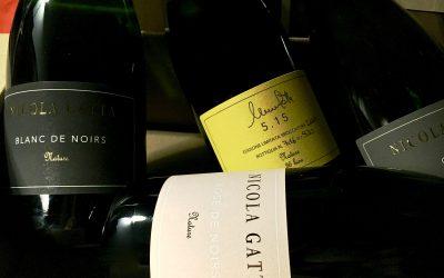 Wine Notes by Corrado Leali. Nicola Gatta